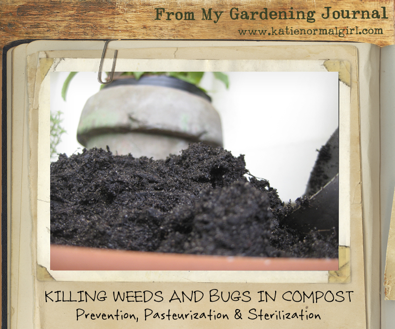 picture from Gardening Journal killing Weeds and Bugs in Compost sterilization pasteurization