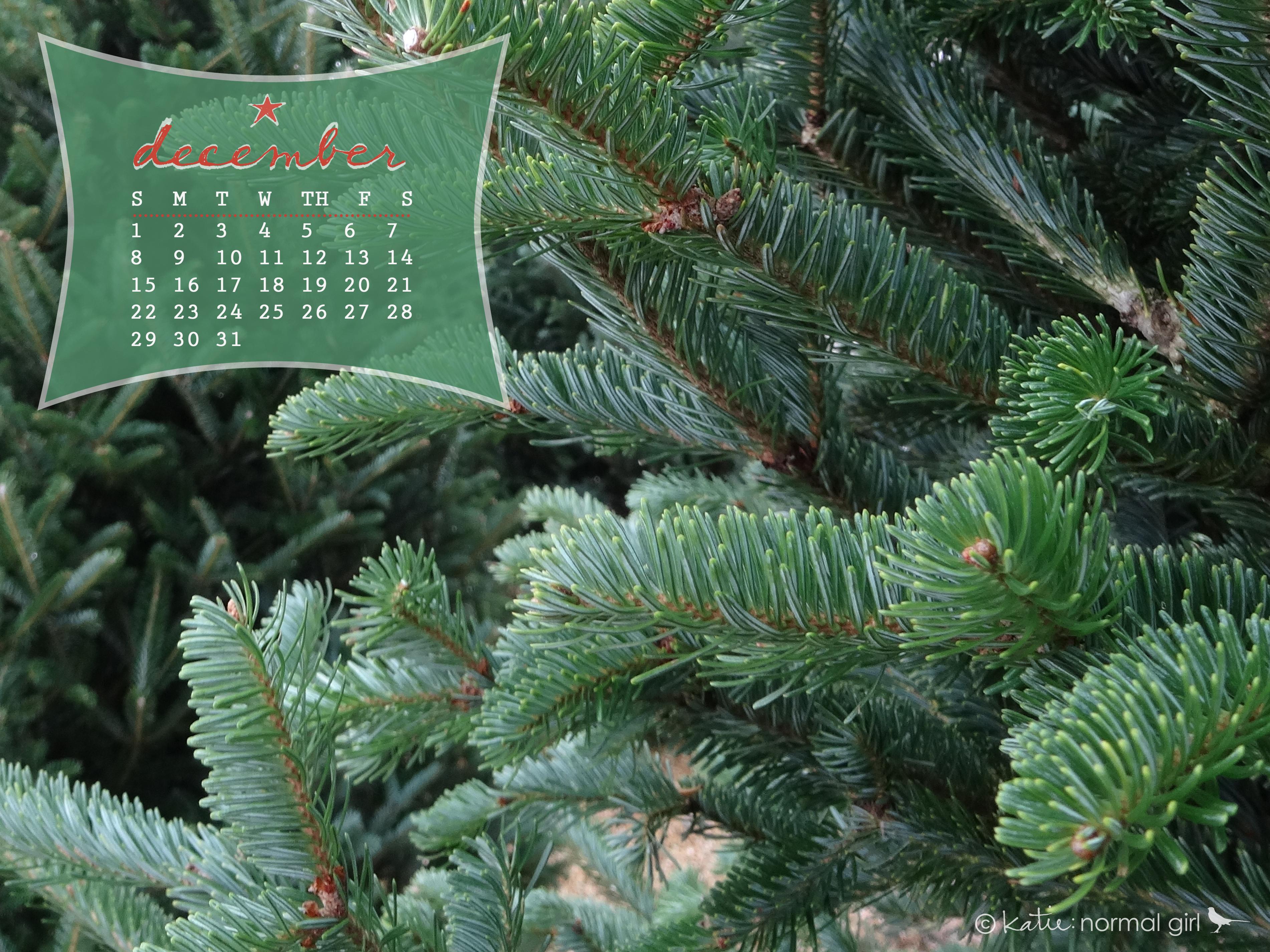 nature walk december 2013 desktop and printable calendars  u2013 katie  normal girl