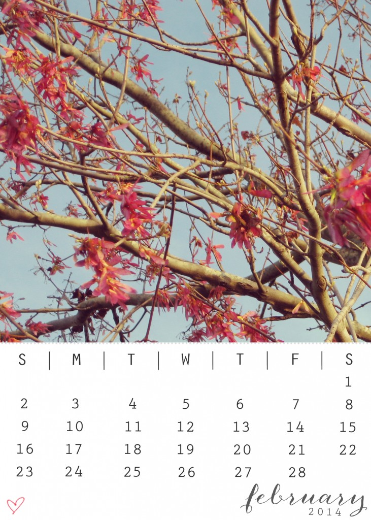 February 2014 Calendar from katienormalgirl.com- printable
