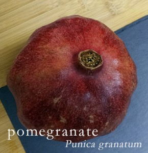 Pomegranate - learn to get the seeds out at katienormalgirl.com | #howto #lifeskills #food