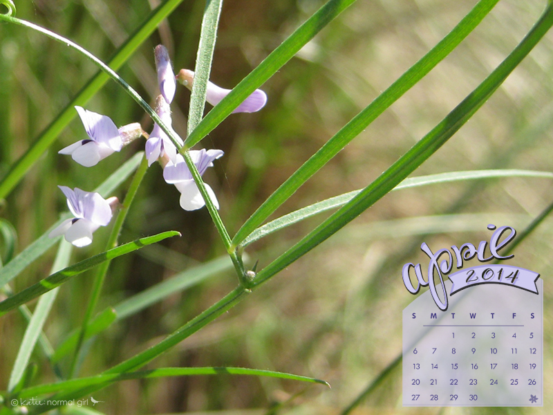 Freebie April calendars and wallpaper from katienormalgirl.com | #free #downloads #calendar