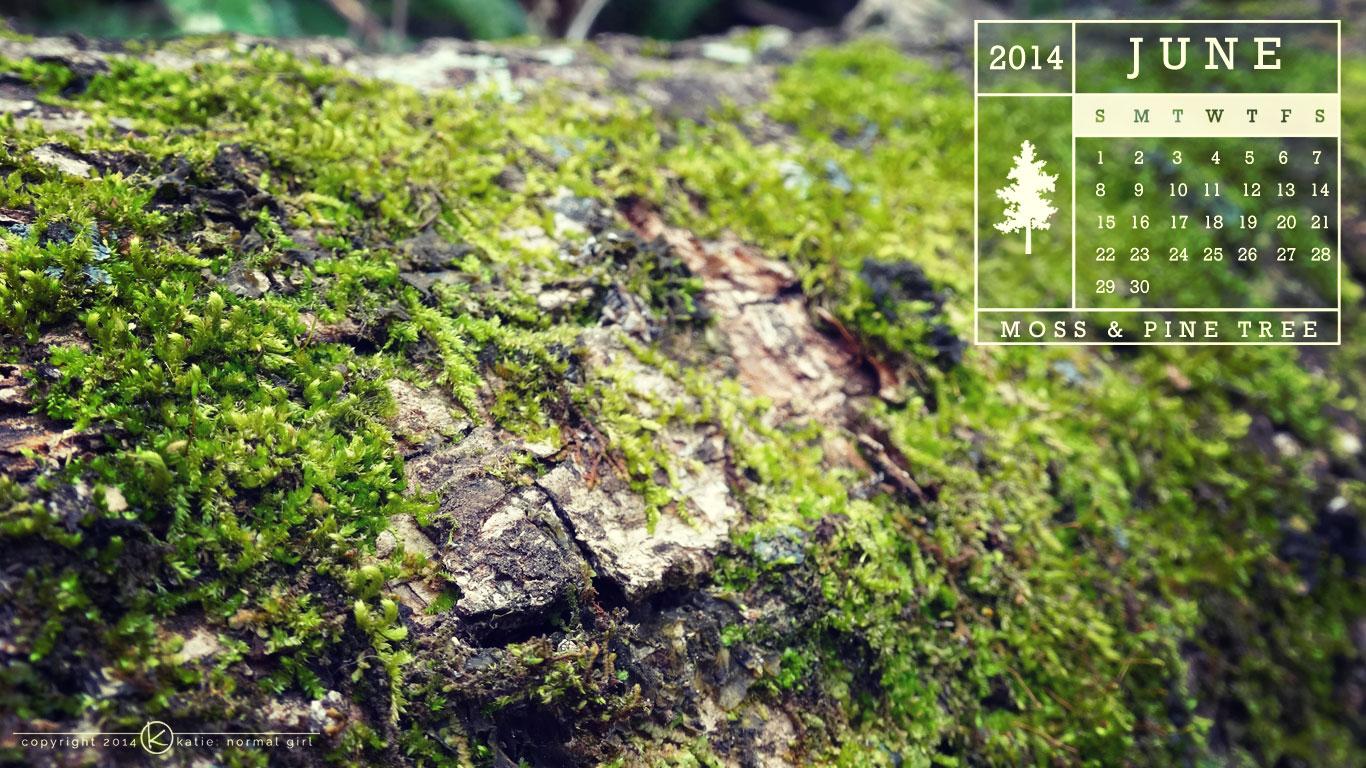 June Calendars and Wallpaper – Moss & Pine Tree – katie