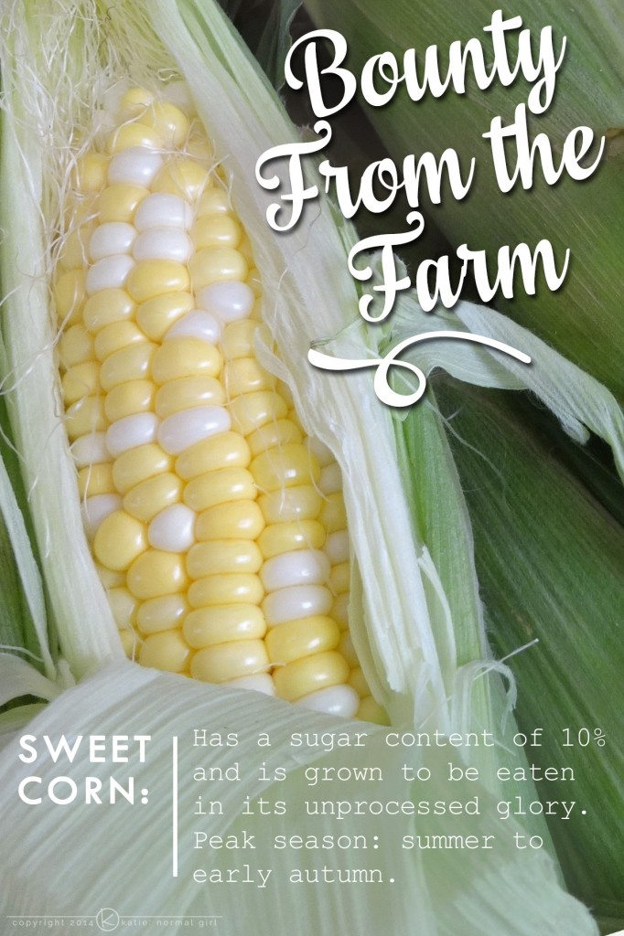 Bounty From The Farm-Sweet Corn from katienormalgirl